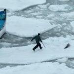 Sealer running toward seal