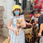 Rescued from Yulin