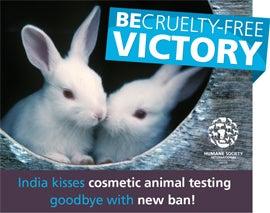 终止动物试验活动2013全球概览
