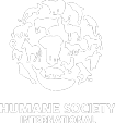 HSI Logo