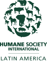 Humane Society International | Latin America